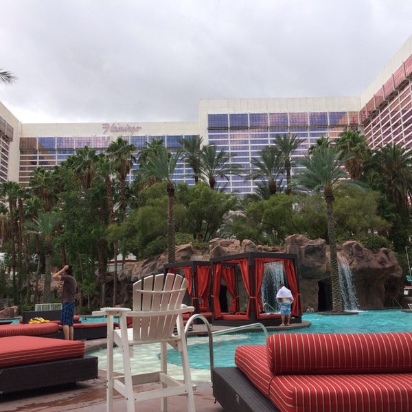 Photo taken at Flamingo GO Pool by Becky S. on 10/10/2013
