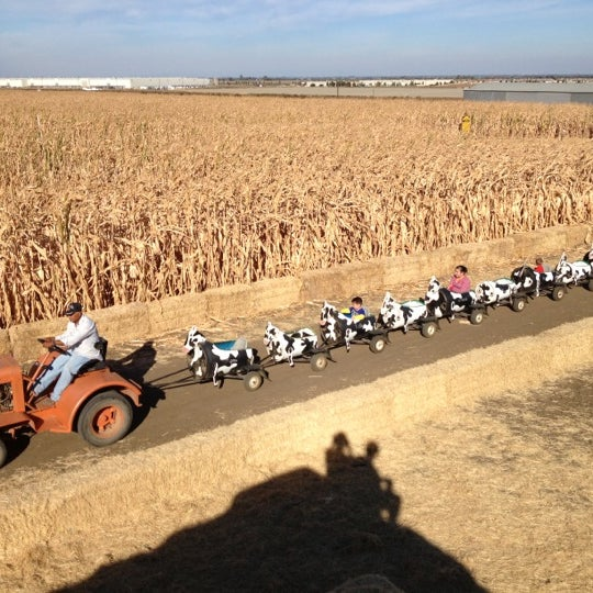 Photo taken at Fantozzi Farms Corn Maze and Pumpkin Patch by Linsey J. on 11/3/2012
