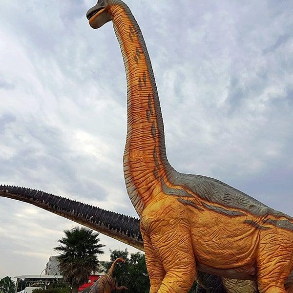 Fotos en DinoParque - Carr. Pachuca-México Km. 84.5, Col. ISSSTE