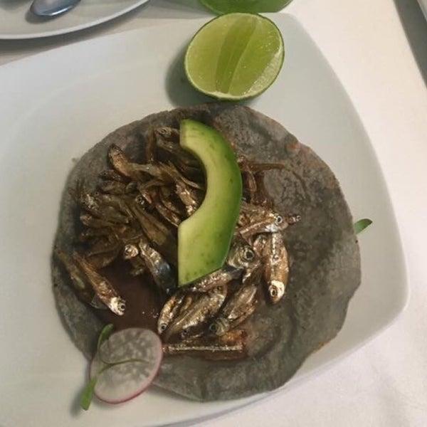 Mexican cuisine. A good entrance  'Taco de charales'.