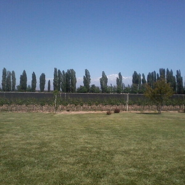 Photo taken at Dominio del Plata Winery by Gisella F. on 11/16/2013