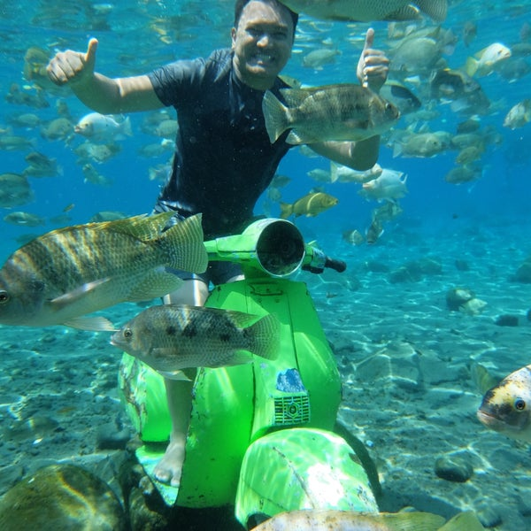 Nice place to practice your underwater photoshoot skills