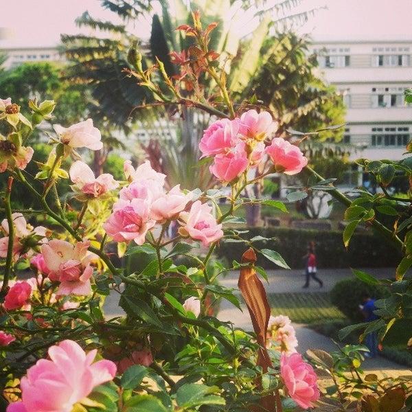 Photo taken at Holy Spirit University Of Kaslik by Holy Spirit University Of Kaslik on 1/21/2014