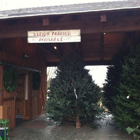 photo taken at bluebird christmas tree farm by lerae on 11232012 - Bluebird Christmas Tree Farm