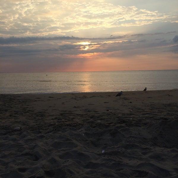 Beach gunnison bdsm photo 67