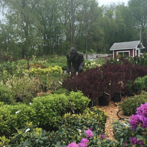 Gade Farm - Garden Center