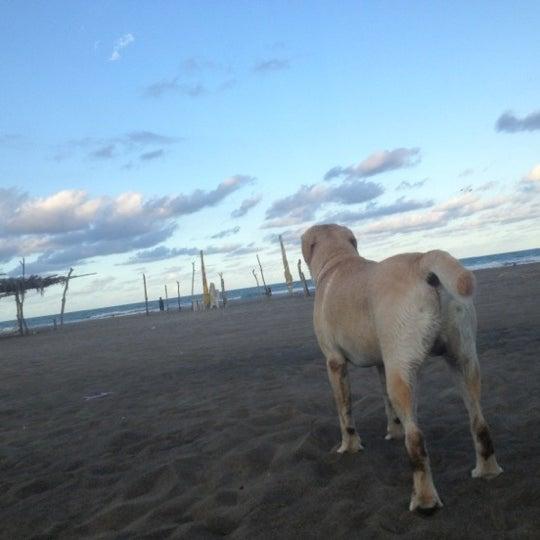 10/26/2012에 Manuel C.님이 Playa Chachalacas에서 찍은 사진