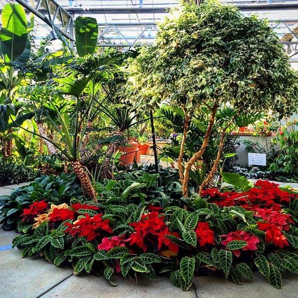 Atlanta Garden Of Bill Hudgins: Botanical Gardens At Roger Williams Park