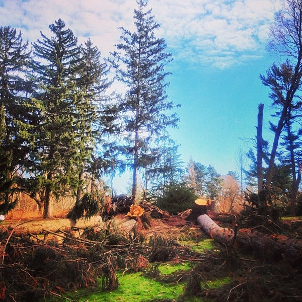 Photo taken at Planting Fields Arboretum by Hunter on 1/20/2013