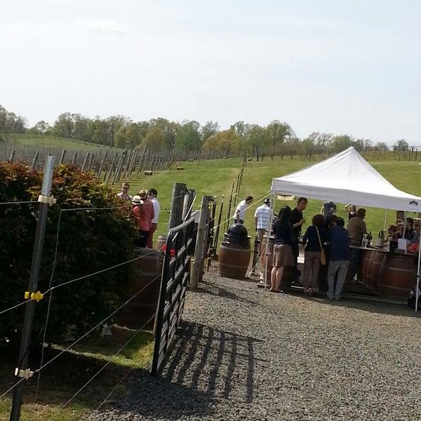Photo taken at Three Fox Vineyards by Lynn C. on 4/27/2013