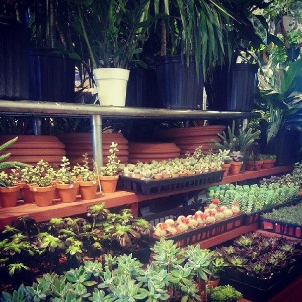 Photo Taken At Botanica Garden Center By Andrea T. On 4/10/2014