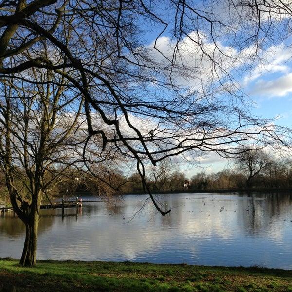 1/1/2013 tarihinde Samantha T.ziyaretçi tarafından Hampstead Heath'de çekilen fotoğraf