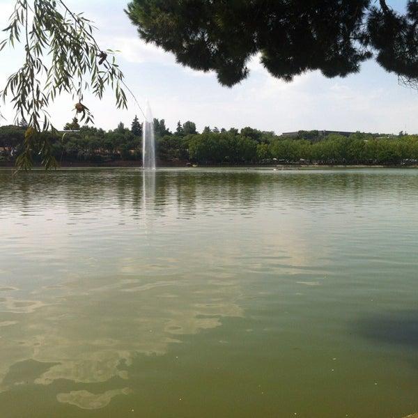 Photo taken at Lago de la Casa de Campo by César on 8/15/2013