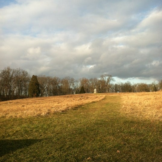 Photo taken at The Wheatfield by Carrie B. on 11/24/2012
