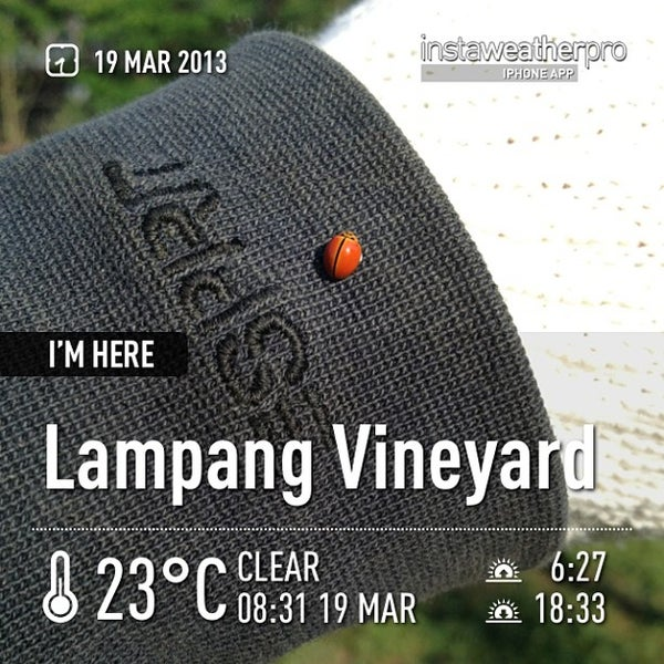 Photo taken at Lampang Vineyard by Jesada K. on 3/19/2013