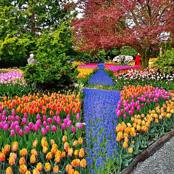 Photos at Skagit Valley Gardens - Flower Shop in Mount Vernon