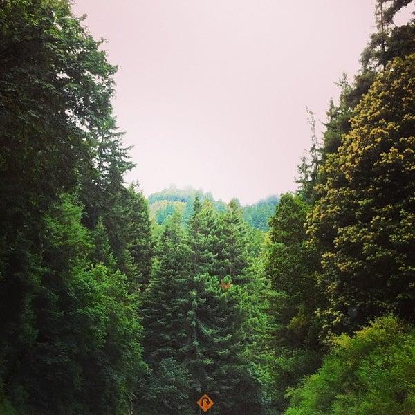 Photo taken at Santa Cruz Mountains by Olivier C. on 6/10/2013