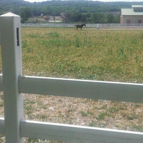 5/5/2013 tarihinde Yavuz G.ziyaretçi tarafından Olimpos At Çiftliği'de çekilen fotoğraf