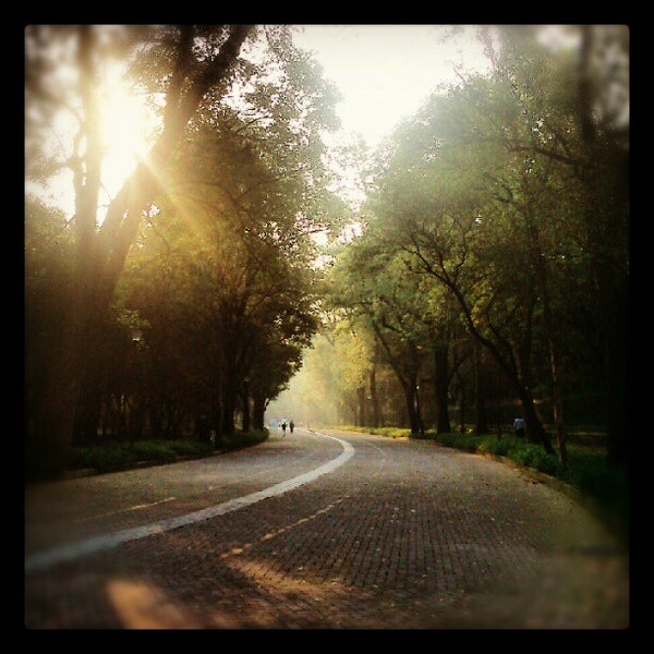 Photo taken at Bosque de Chapultepec by Diego E. on 9/30/2012