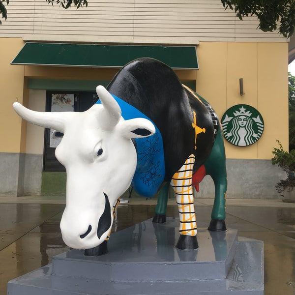 Photo taken at Starbucks by natiz on 5/17/2017