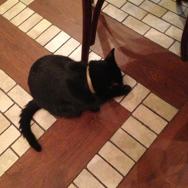 Снимок сделан в Чорний Кіт / The Black Cat пользователем Yuliya K. 12/21/2014