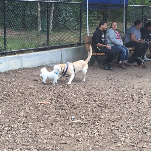 Photo taken at Cunningham Park Dog Run by Michael C. on 9/27/2015