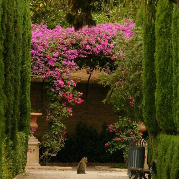 Jardines de monforte garden in exposici for Jardines de monforte