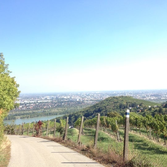 Photo taken at Kahlenberg by Hadschi B. on 10/3/2012