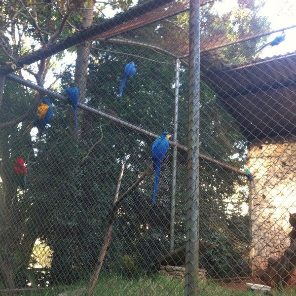 Photo taken at Parque das Hortênsias by La S. on 8/3/2013