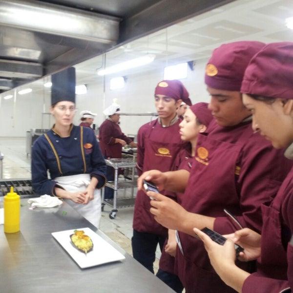 Escuela de cocina cocinarte torreon coahuila de zaragoza - Escuela de cocina zaragoza ...