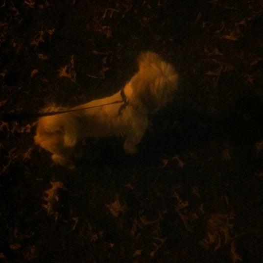 Das Foto wurde bei MacDonald Park von Candace S. am 10/25/2012 aufgenommen