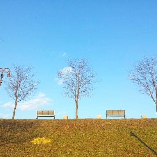 Photo taken at Yuldong Park by Soukjin B. on 11/17/2012