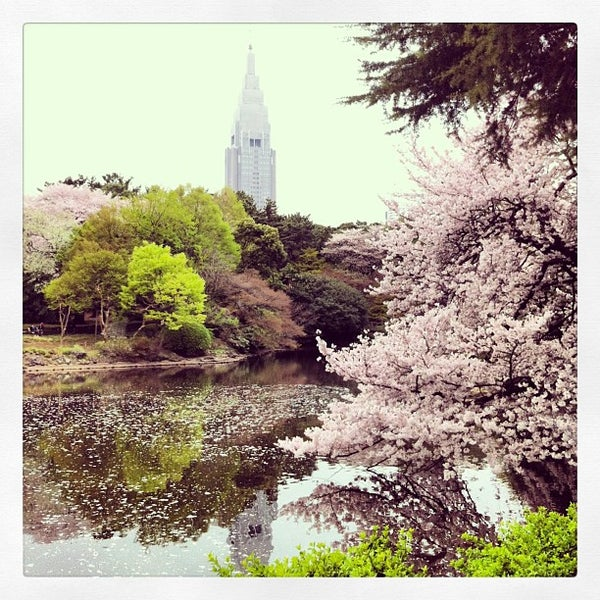 Photo taken at Shinjuku Gyoen by Gio on 3/30/2013