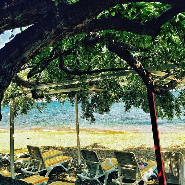 6/20/2015 tarihinde Yildiray E.ziyaretçi tarafından Kanara Hotel'de çekilen fotoğraf