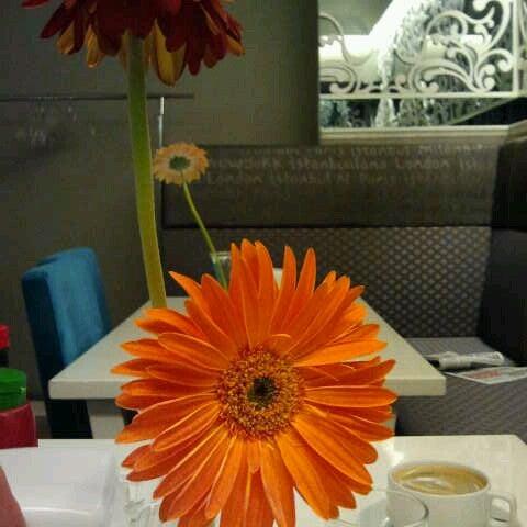 3/13/2013 tarihinde Tuba C.ziyaretçi tarafından LimonH₂O Cafe Bistro'de çekilen fotoğraf