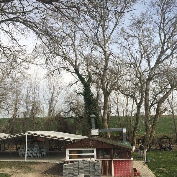 3/17/2018 tarihinde Yasinnrb B.ziyaretçi tarafından Olimpos At Çiftliği'de çekilen fotoğraf