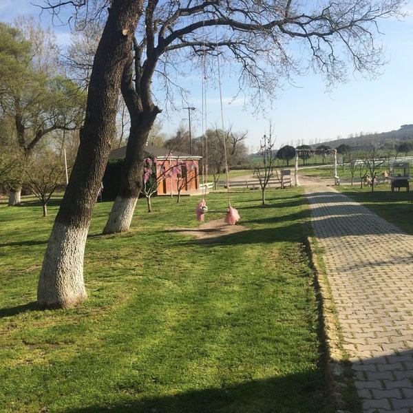3/30/2018 tarihinde Yasinnrb B.ziyaretçi tarafından Olimpos At Çiftliği'de çekilen fotoğraf