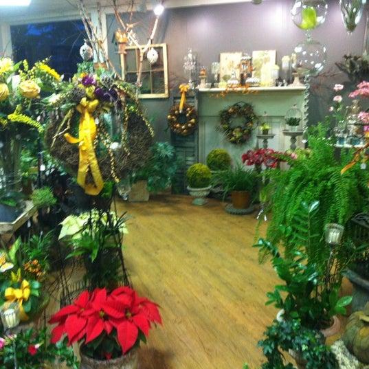 Black iris flower shop in saratoga springs mightylinksfo