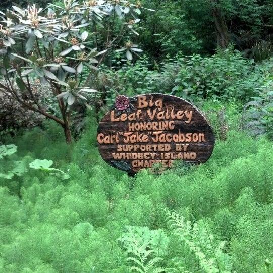 Photos at Meerkerk Botanical Gardens - Garden