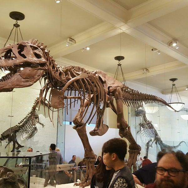 Photo taken at David H. Koch Dinosaur Wing by Tak Y. on 2/18/2017