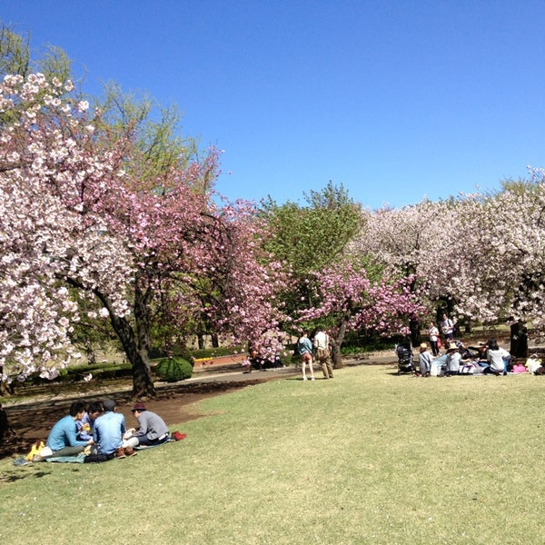 Photo taken at Shinjuku Gyoen by SATOSHI H. on 4/7/2013