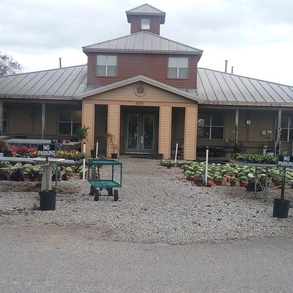 Dabney Nursery Memphis Tn