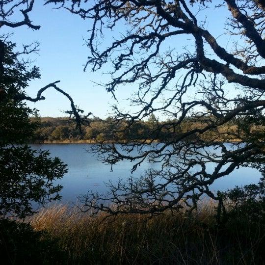 Photo taken at Lake Ilsanjo by Kevin R. on 2/11/2013
