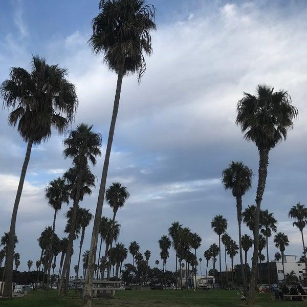 Приятный парк с пальмами, видом на океан 🌊 и возможностью делать барбекю. Нужно только привезти свои угли 🔥