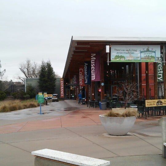 Turtle Bay Exploration Park Turtle Bay 10 Tips From