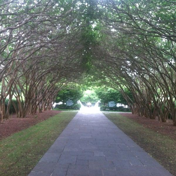 Foto tirada no(a) Dallas Arboretum and Botanical Garden por Elyse E. em 6/15/2013