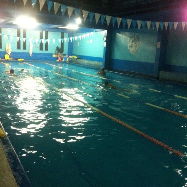 escuela de nataci n nueva santa maria rank l nueva