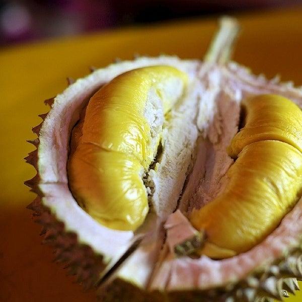 """Photo prise au """"Combat"""" Top Quality Durian par JK le7/30/2013"""