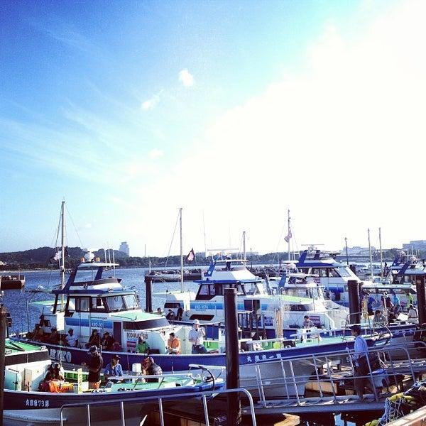 8/17/2013にschenkluが金沢八景 忠彦丸 釣船・釣宿で撮った写真