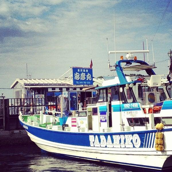 6/7/2013にschenkluが金沢八景 忠彦丸 釣船・釣宿で撮った写真